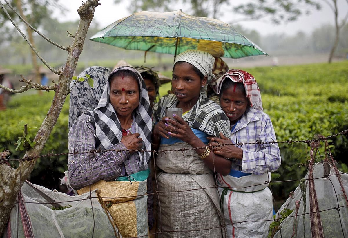 Tea garden workers huddle under an umbrella as they wait for the rain to stop to resume their work inside Aideobarie Tea Estate in Jorhat, Assam. (Photo: Reuters)
