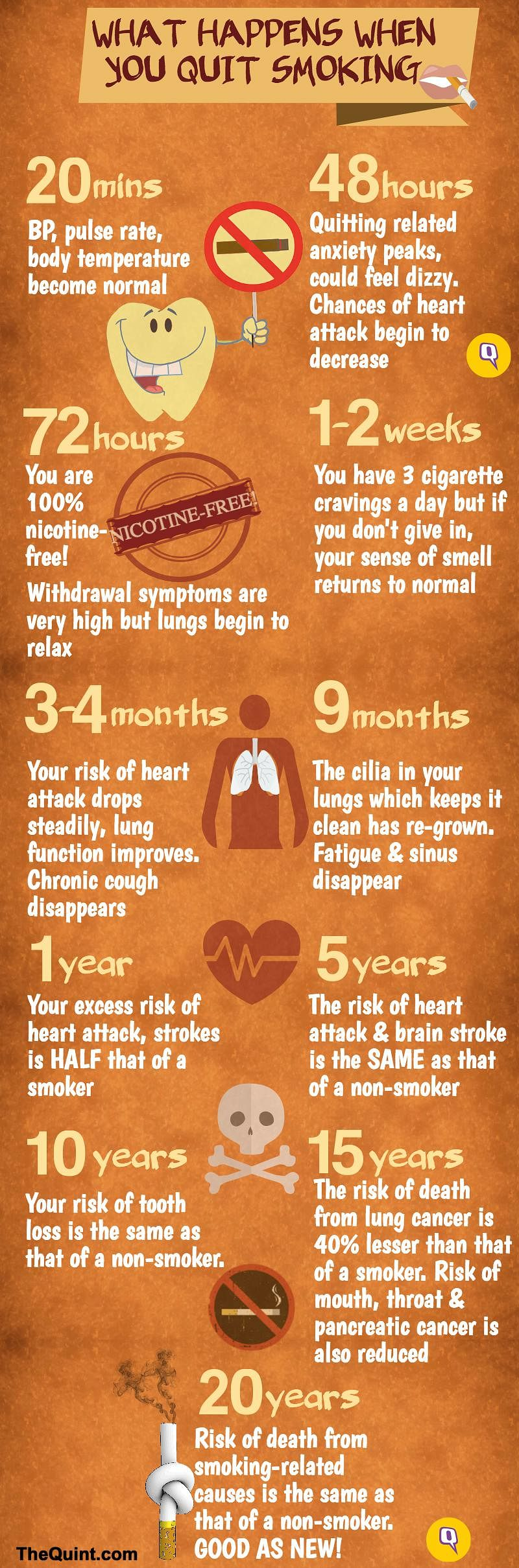 Here S What Happens When You Quit Smoking