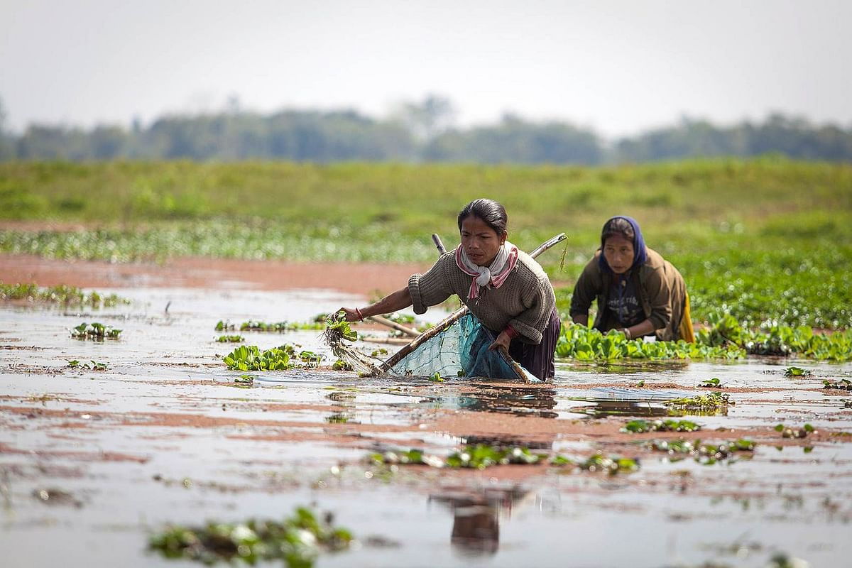 """Millions of people rely on wetlands for their livelihoods. (Photo Courtesy: Flickr/<a href=""""https://www.flickr.com/photos/icimodgallery/"""">ICIMOD Kathmandu</a>)"""