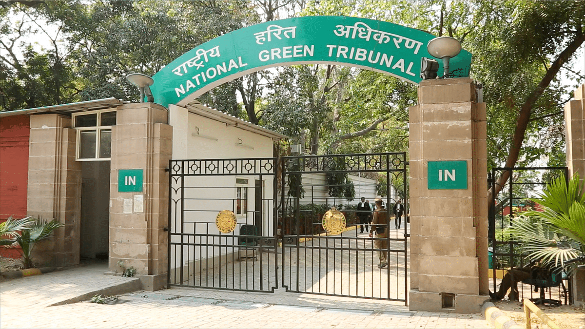 The National Green Tribunal has become a bit of a second home to me as I've followed your case. (Photo: Sanjoy Deb)