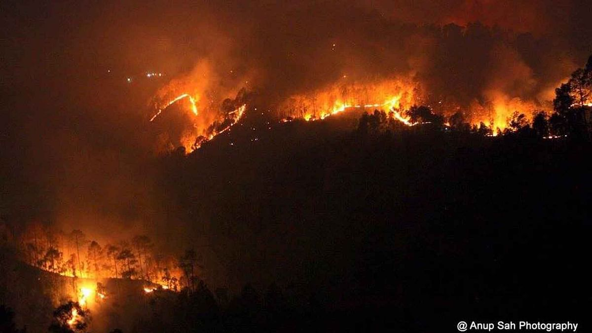 Behind the Flames: How Uttarakhand Got Out of Control