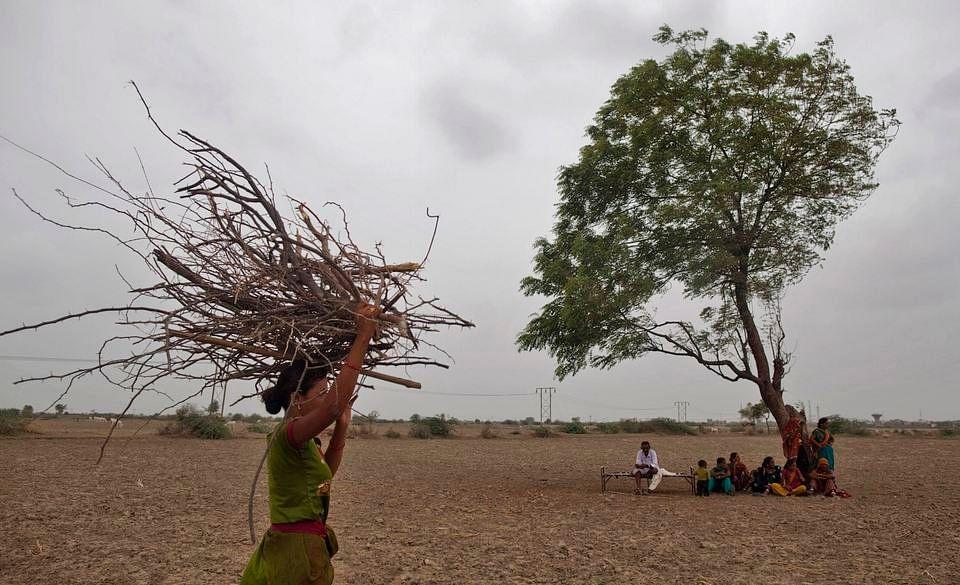 Prolonged dry spells in the Vidarbha region in Maharashtra triggered farmer suicides in the summer (Photo: AP)
