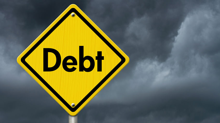 The external debt to GDP ratio stood at 23.7 per cent at end-March. (Photo: iStockPhoto)