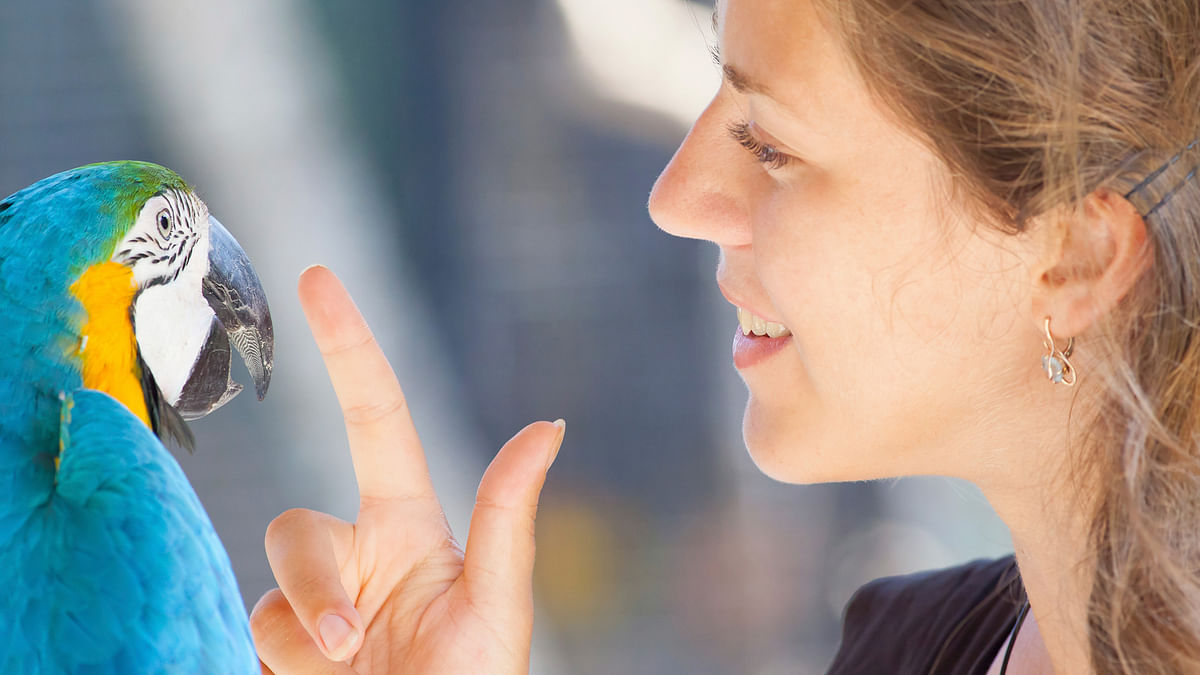 Woman talking to a parrot. Image for representational purpose. (Photo: iStockphoto)