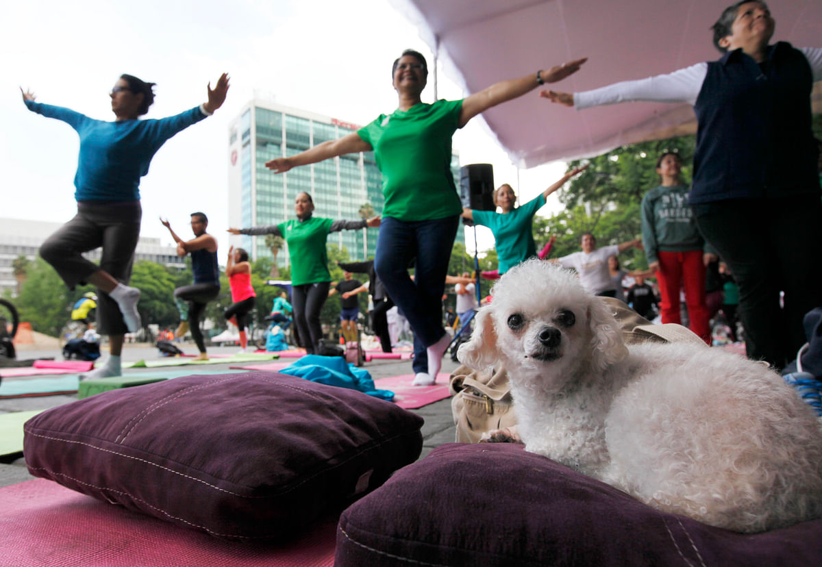 Yoga day session in Mexico. (Photo: AP)