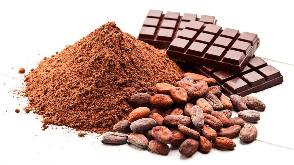 Is Cocoa the New Cocaine? Clubbers Are Getting High on Chocolate