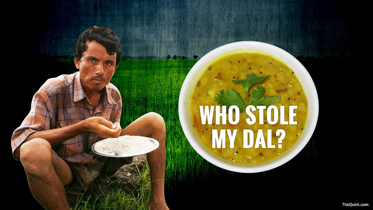 Who Stole My Dal? The Story Behind Rising Costs of Pulses