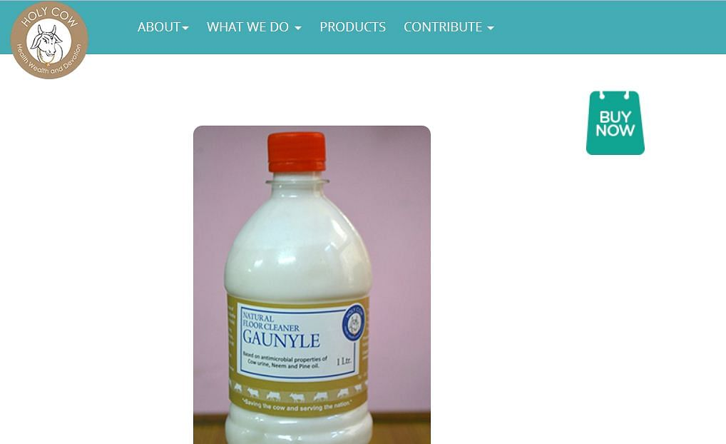 Gaunyle, a form of phenyl made with cow extracts, for sale