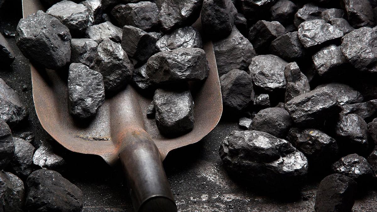 Coal Scam: ED Attaches 348-Acre Land in Madhya Pradesh