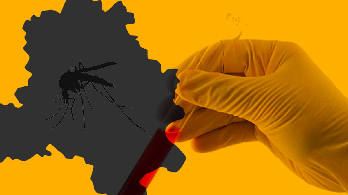 According to a latest municipal report, at least 657 people have been affected by dengue this season in Delhi alone.