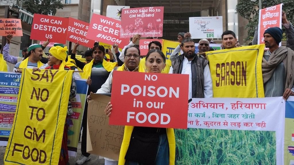 Activists and farmers protest against GM mustard crop outside the Environment and Forest ministry in New Delhi on  5 February 2016. (Photo: IANS)