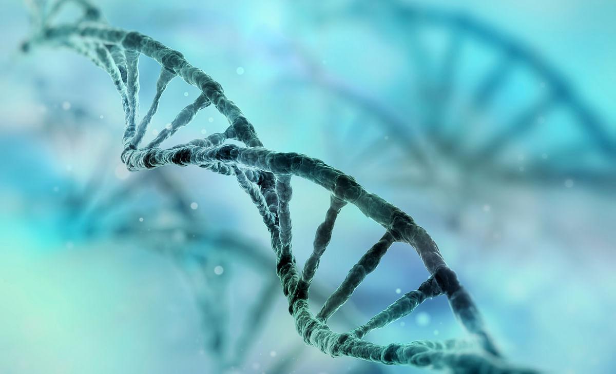 DNA strands have a unique fingerprint. (Photo: iStockphoto)