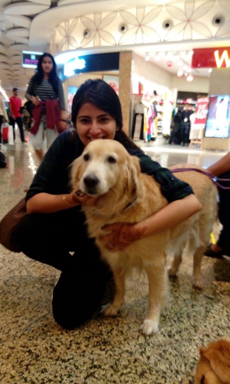 """This set of three dogs, Pepe, Sunshine and Pearl, promise to soothe, comfort and de-stress harried passengers inside the departure terminal. (Photo Courtesy: Animal Angels Foundation/<a href=""""http://www.animalangels.org.in/"""">www.animalangels.org.in</a>)"""
