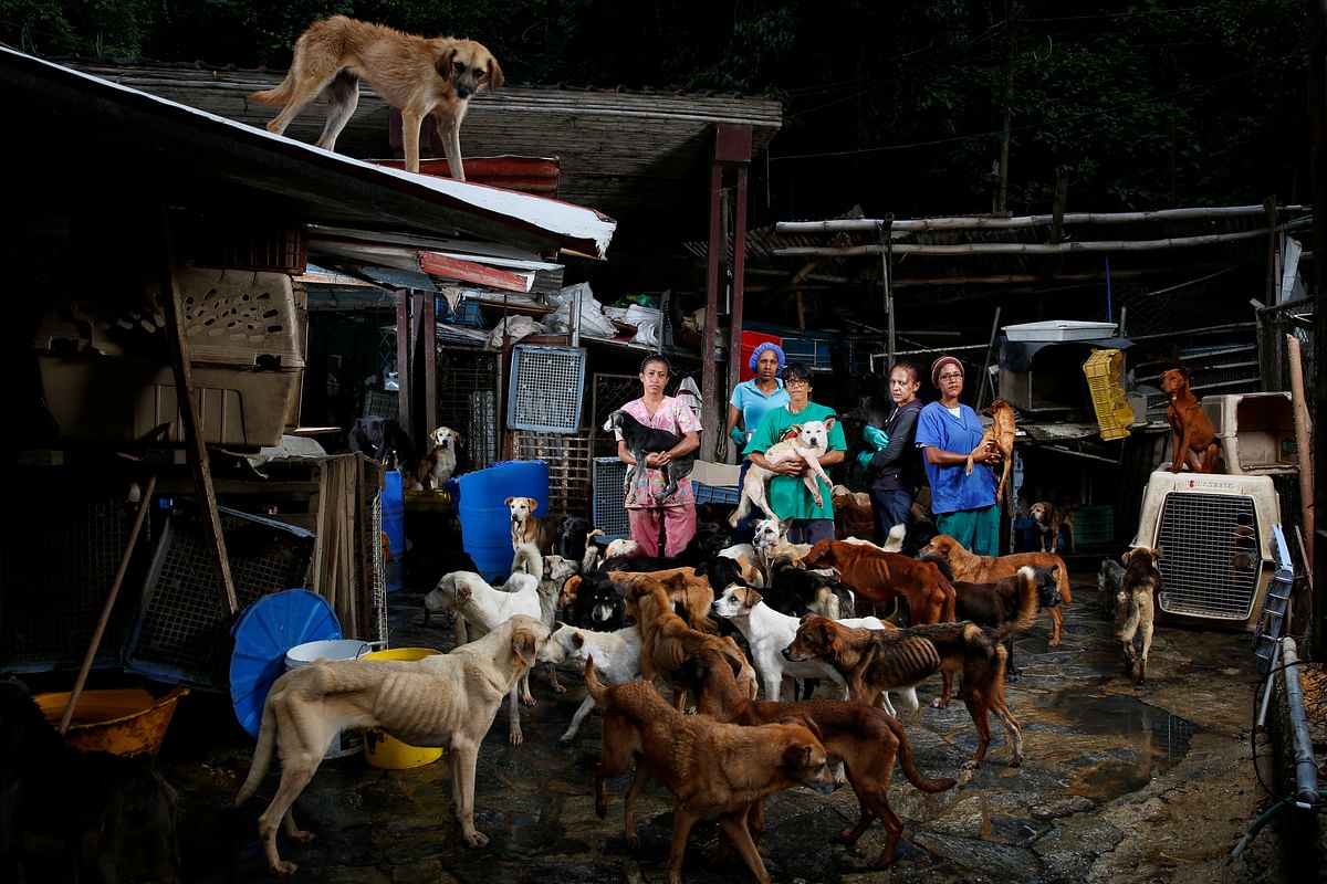 Maria Silva, Milena Cortes, Maria Arteaga, Jackeline Bastidas and Gissy Abello pose for a picture at the Famproa dogs shelter where they work, in Los Teques, Venezuela, August 25, 2016.