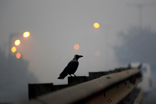 File photo of pollution in New Delhi, after Diwali. (AP Photo/Manish Swarup)