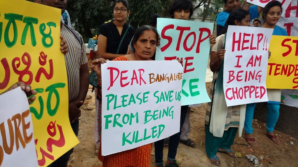 People protesting against tree felling along the Nrupathunga road in Bengaluru. (Photo: Subir Ghosh/ <b>The Quint</b>)