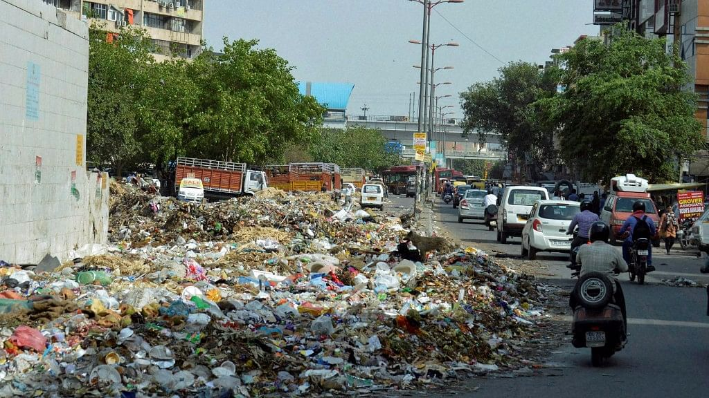 'What Are You Doing About Piled Up Garbage?', SC Asks Delhi Govt