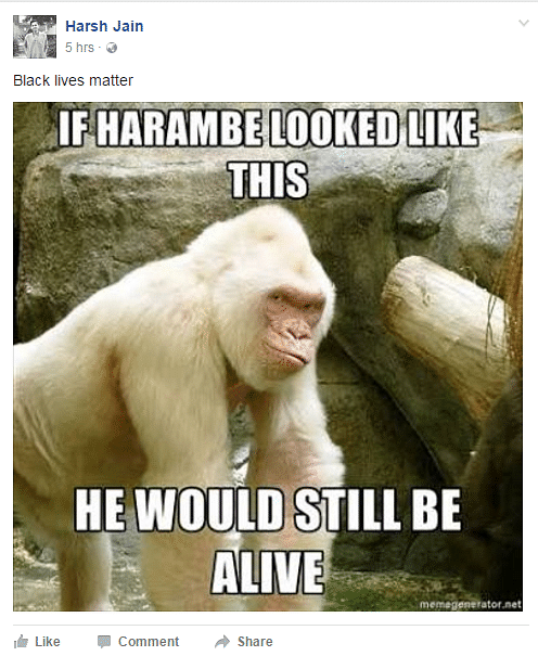 """Black Lives Matter. (Photo Courtesy: Facebook/<a href=""""https://www.facebook.com/events/1750139258592595/?active_tab=posts"""">Candlelight Vigil for Harambe</a>)"""