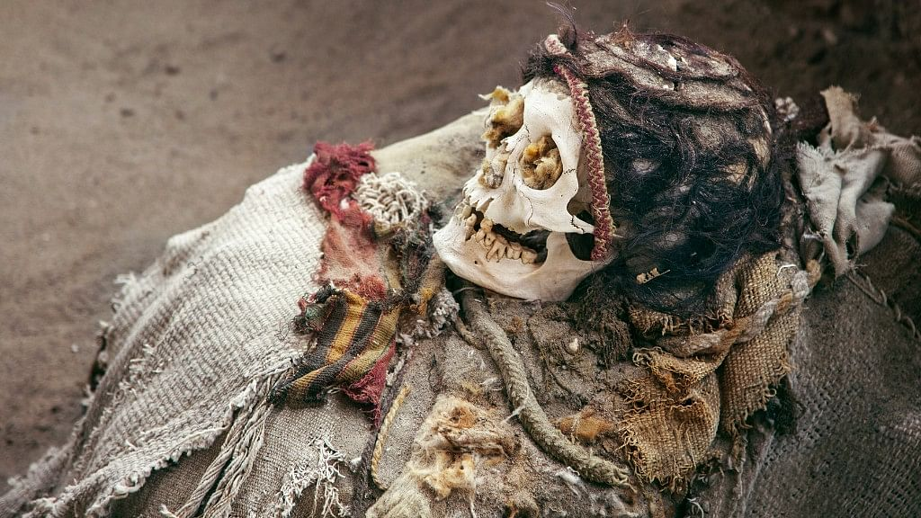 Police also recovered five skulls from the 'exorcist' Dharmraj Gond's home. Image used for representation. (Photo: iStock)
