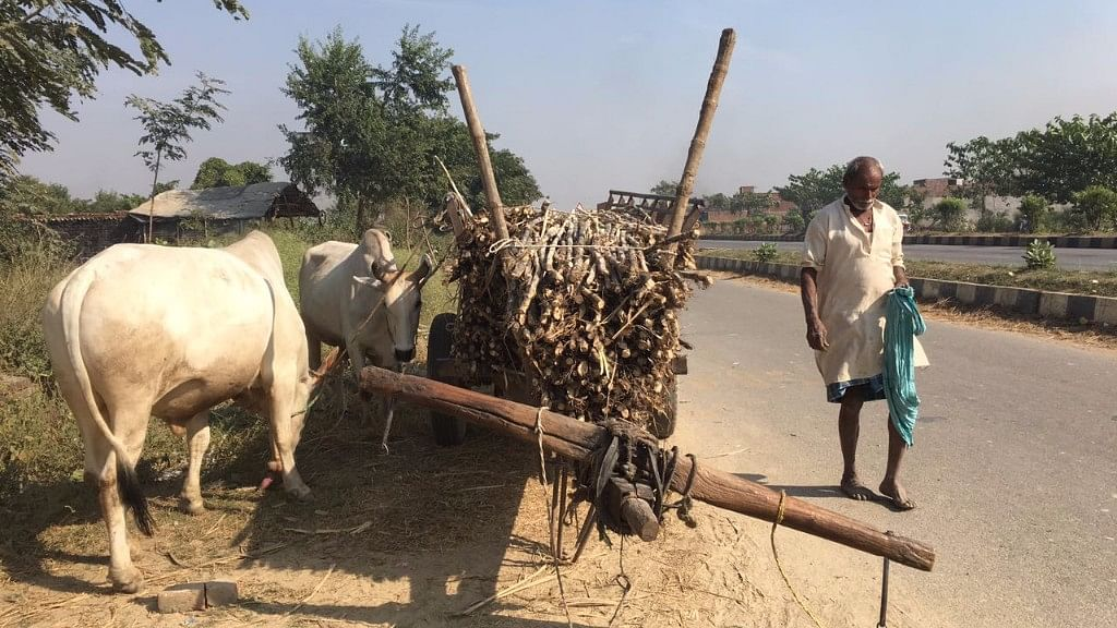 Rural India has cautiously embraced demonetisation, arguing that the country's soaring inequality can only be a product of corruption and tax evasion. (Photo: <b>The Quint</b>/Esha Paul)