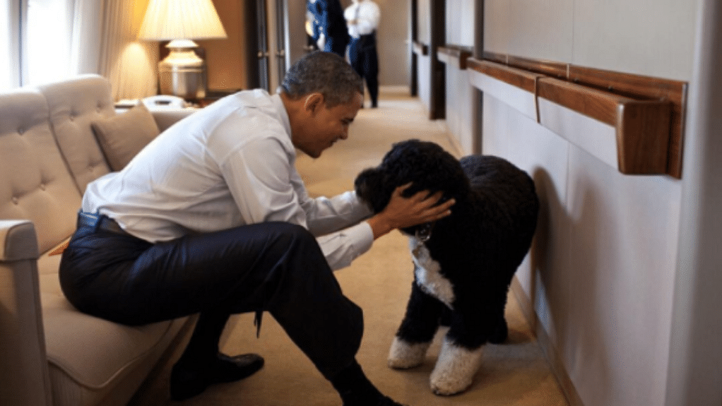 """President Barack Obama with his pet dog at the White House. (Photo Courtesy: Instagram/<a href=""""https://www.instagram.com/petesouza/?hl=en"""">Pete Souza</a>)"""