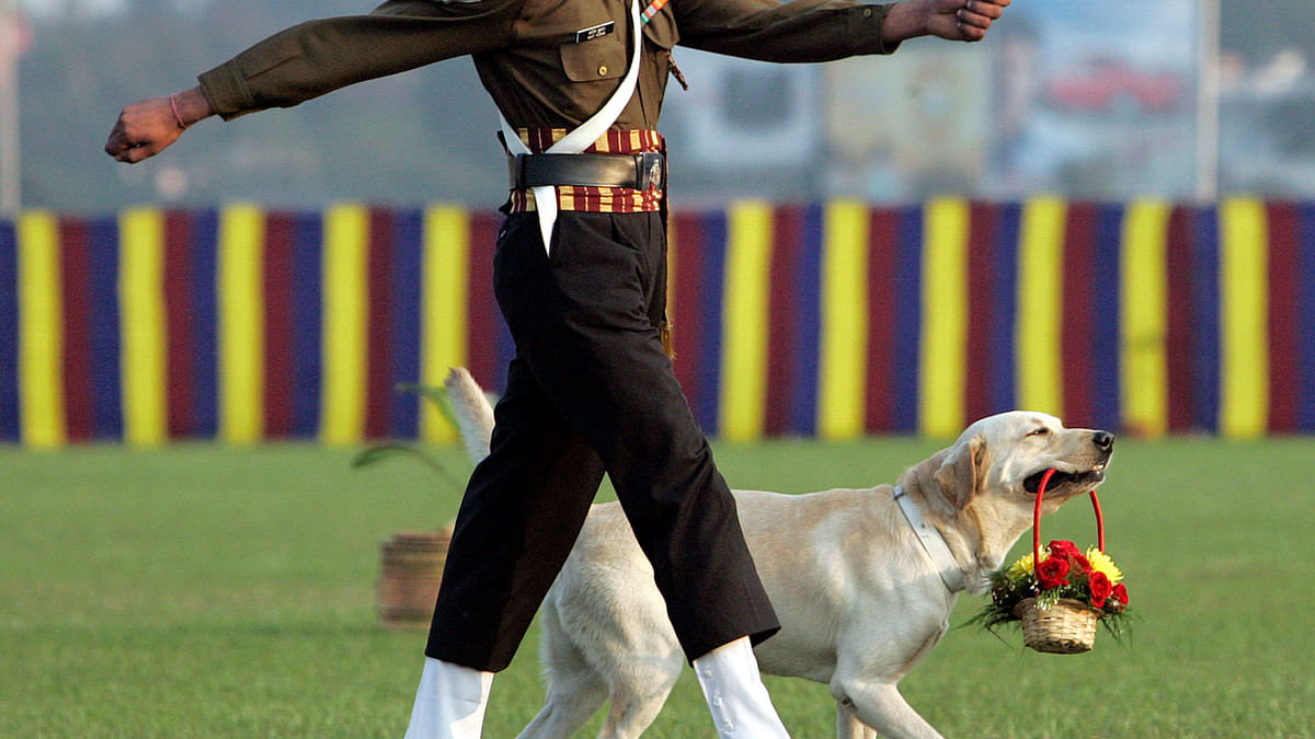 An army dog carries flowers as a soldier marches in Kolkata. (Photo: Reuters)