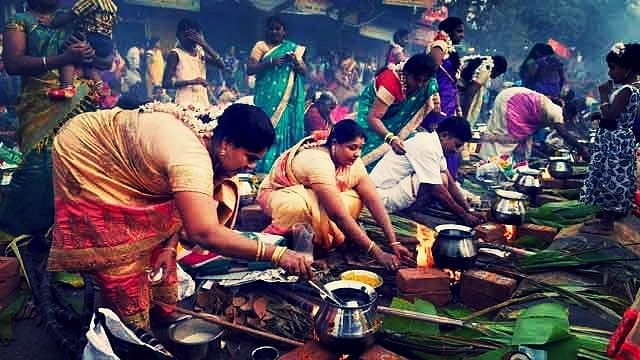Pongal is a Feeling: Here's How You Sample It