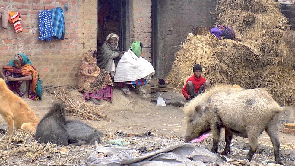 The Musahar community is still living in squalor across villages in Bihar. (Photo Courtesy: Mohd Imran Khan)