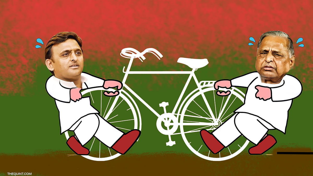 As the internal rift within the SP widens, the Election Commission may freeze the symbol of cycle. (Photo: Rhythum Seth/ <b>The Quint</b>)