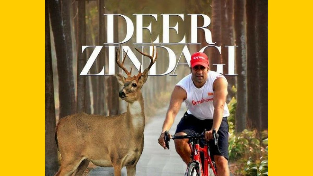 'Deer' Salman. (Photo Courtesy: Twitter)