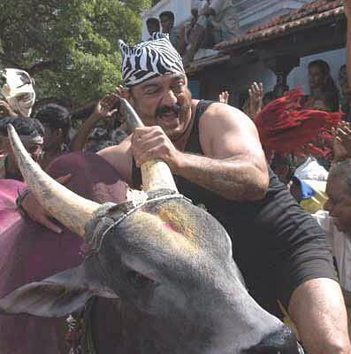 """Kamal Hassan tames a bull in one of the over 200 Tamil films he has acted in. (Photo Courtesy: <a href=""""https://twitter.com/rgvenkateshgnfi/status/692158888192380928"""">Twitter</a>)"""