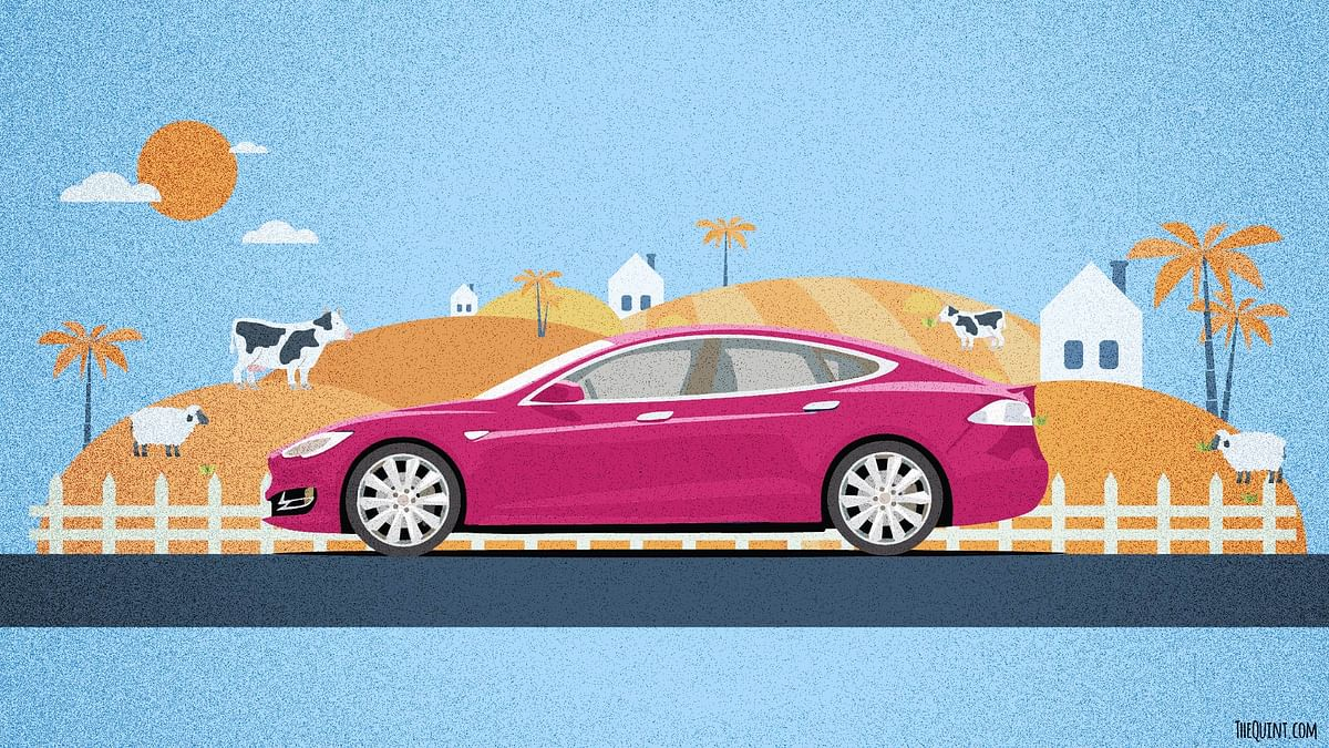 Elon Musk wants to bring Tesla Electric Cars to India this summer. (Graphic:<b> The Quint</b>)