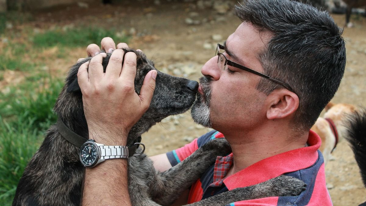"""<div class=""""paragraphs""""><p>This man takes care of the 'patriot dogs' who have served the country. </p></div>"""