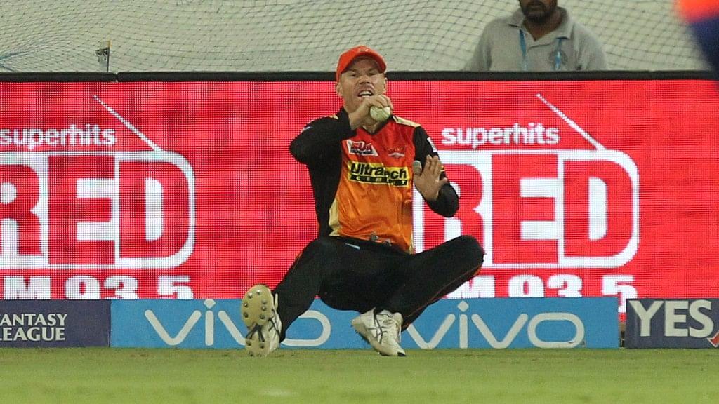 David Warner hurt himself while fielding against Delhi Daredevils. (Photo: BCCI)