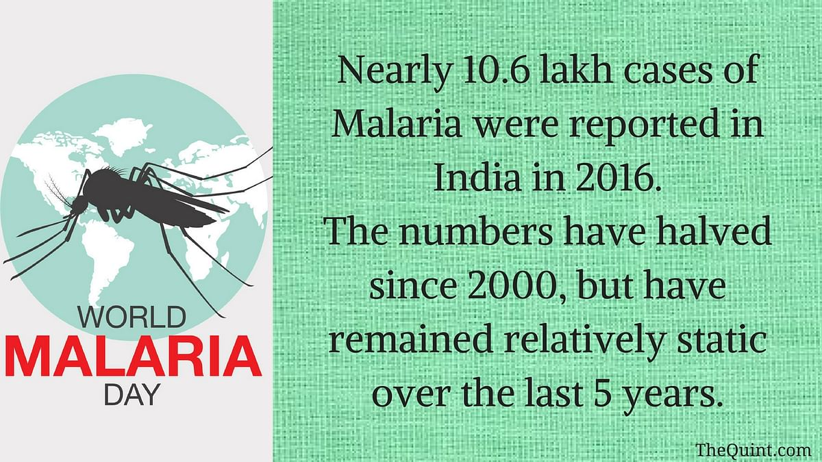 World Malaria Day: How Far Is India From Eliminating the Disease?