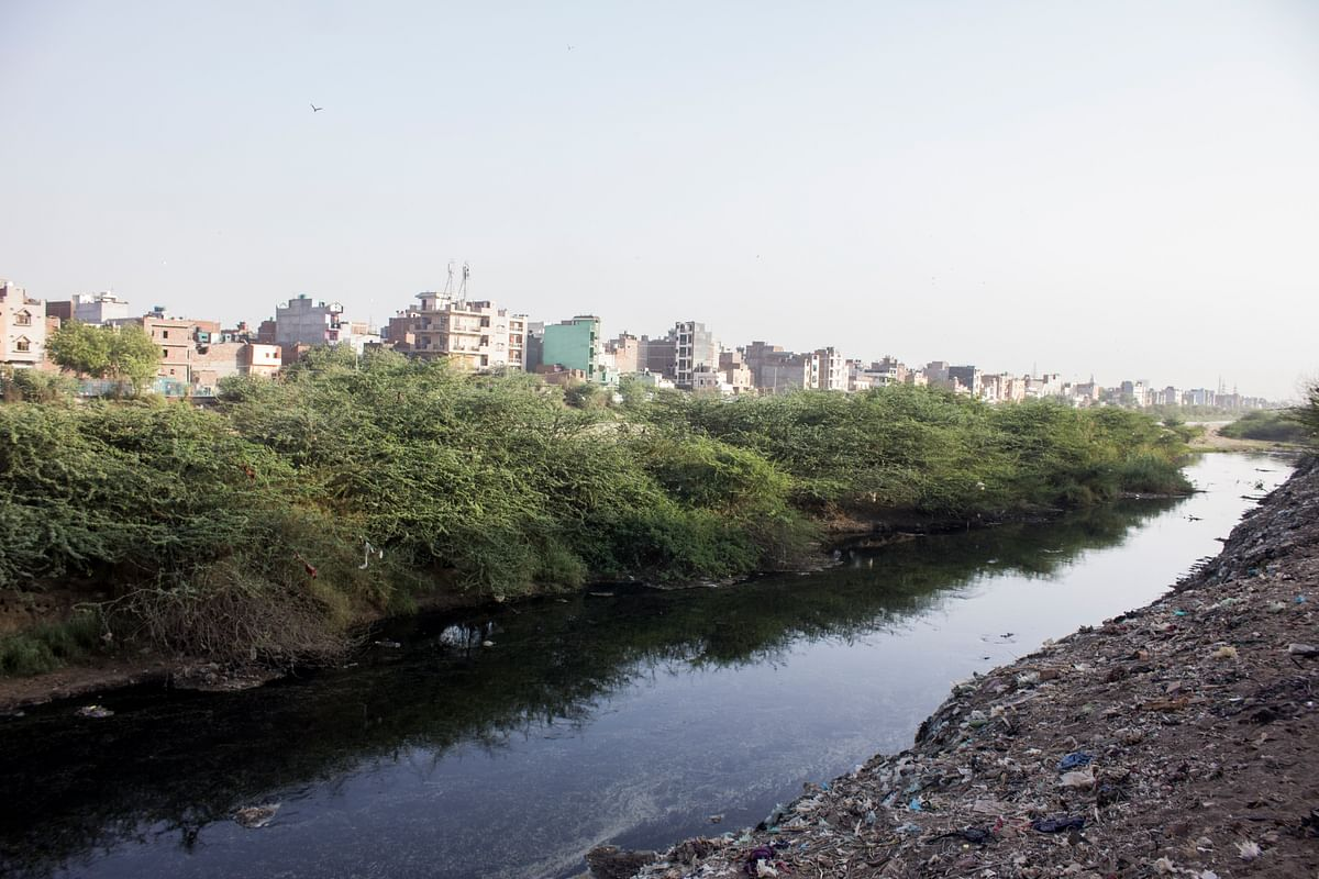 Garbage, blood from the slaughterhouse and other waste, everything goes into this. There are residential buildings nearby. (Photo: Abhilash Mallick/<b>The Quint</b>)