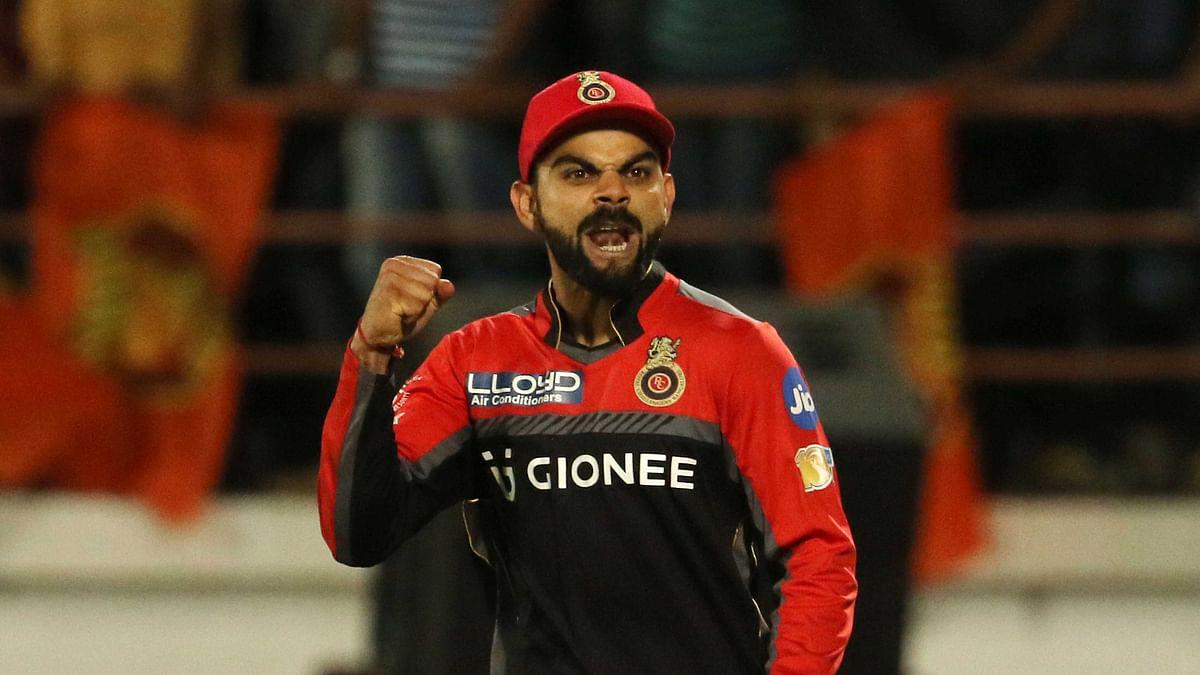 Virat Kohli celebrates the team's win. (Photo: BCCI)