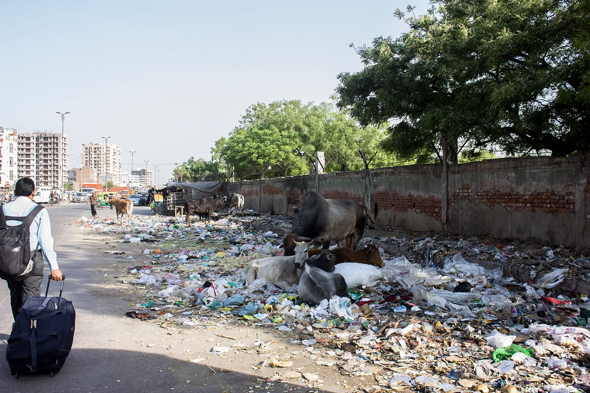 Right outside the Ghazipur bus stop, the not-so-sweet smell of garbage welcomes people. (Photo: Abhilash Mallick/<b>The Quint</b>)