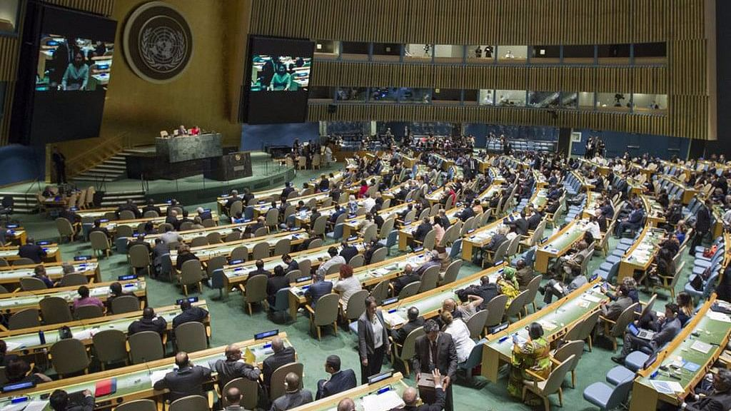 UN Slams Israel for 'Excessive Force' Against Palestine