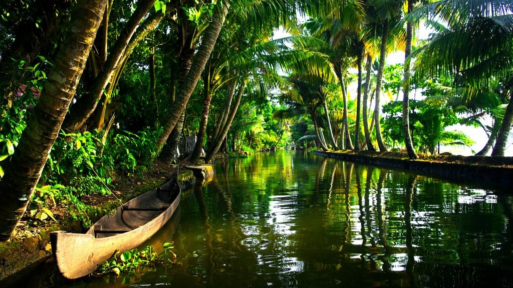 Kerala receives annual average rain of 3,107 mm, enough to sustain rainforests that the state is home to. (Photo: iStock)