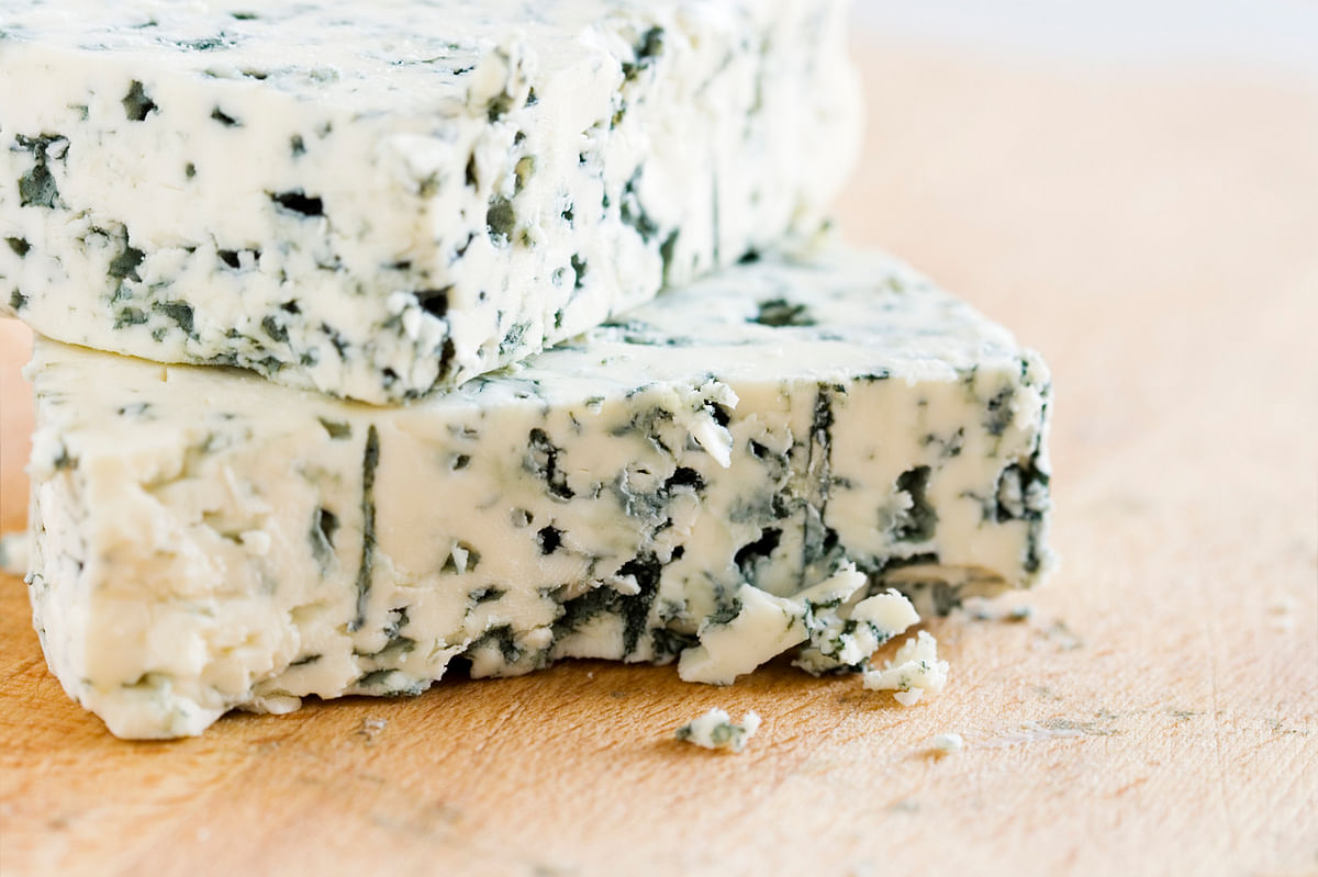 Blue cheese is a natural probiotic but isn't indigenous to India.