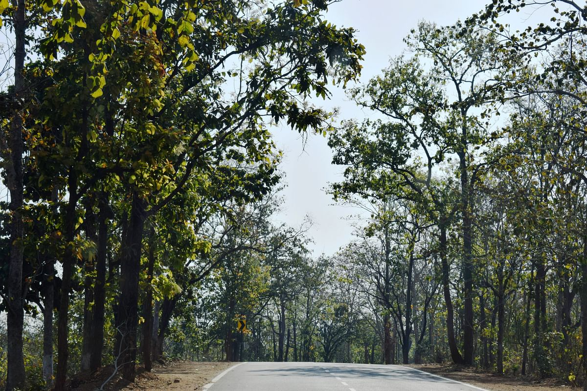 The new highway to the Gunj. (Photo Courtesy: Lesley D Biswas)