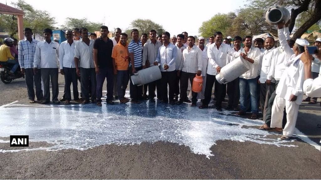 In a display of solidarity with the strike, a section of the farmers took to the highways in Ahmednagar, spilling milk on the roads. (Photo: ANI)