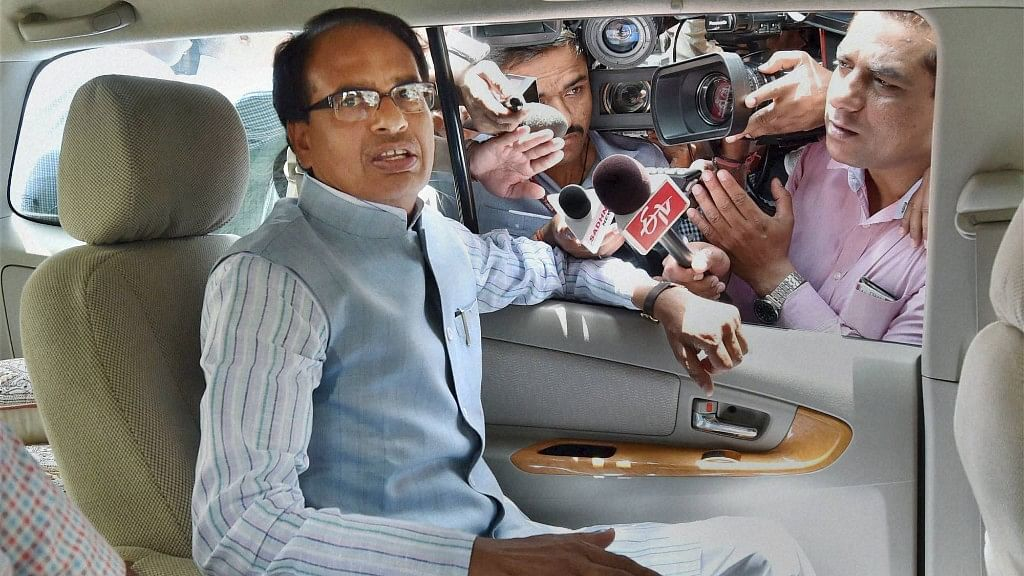 MP Govt to Set Up 'Gau Cabinet' for Protection of Cows: CM Chouhan