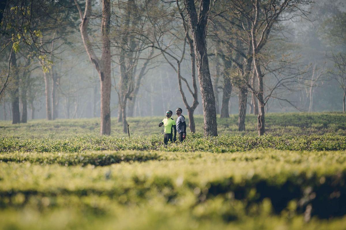Soaking up Kaziranga. (Photo courtesy: Aanchal Dhara Photography)