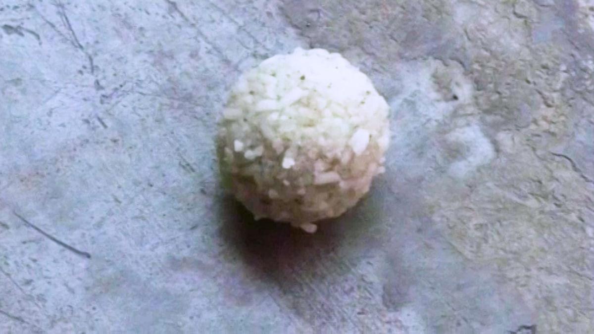 Plastic rice ball. (Photo: ANI screengrab)