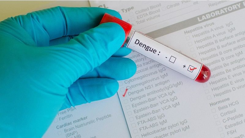 Anaemic People More Likely to Transmit Dengue