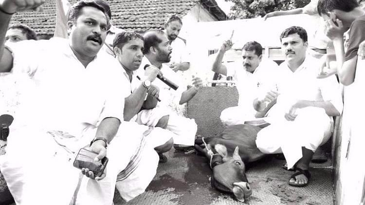 Members of Youth Congress with a slaughtered cow. (Photo Courtesy: The News Minute)