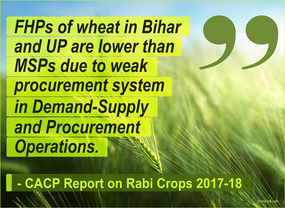 Mr Bhalla, Your Data Doesn't Tell the Whole Story of Farm Crisis
