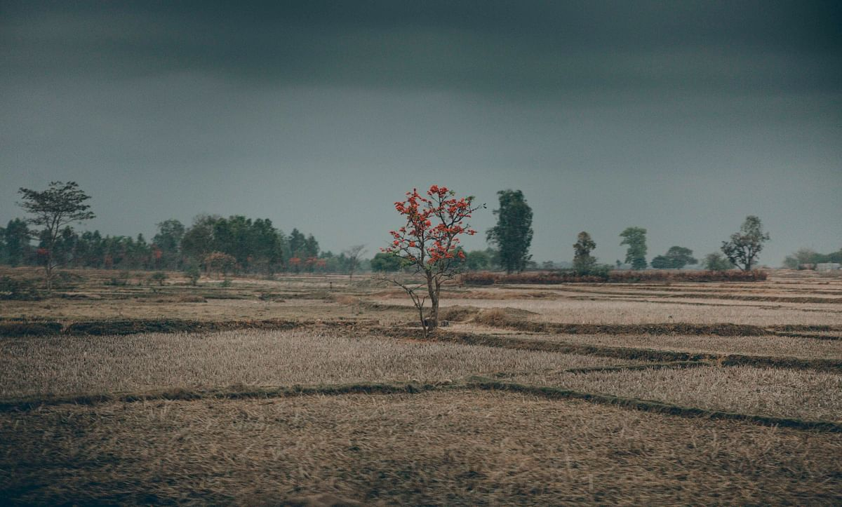 The colourful countryside of Orissa. (Photo courtesy: Aanchal Dhara Photography)